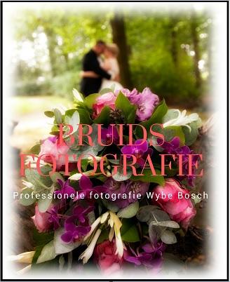 bruidsfotografie trouwfotoshoot huwelijksfotografie - friesland damwoude dokkum leeuwarden - professionele fotografie wybe bosch (6)